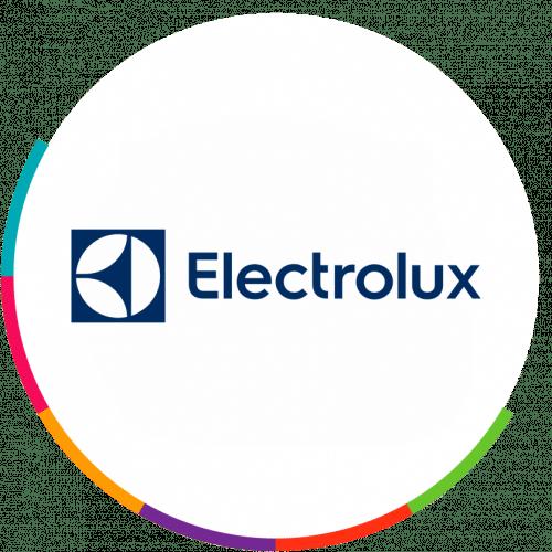 A Electrolux, empresa atuante no segmento de linha branca, buscava uma solução que permitisse apoio e gestão à operação de trade marketing. Com o apoio da parceira Dr. Joe, a Electrolux conseguiu melhorar a gestão do time de promotores, ter mais produtividade e excelência na performance.