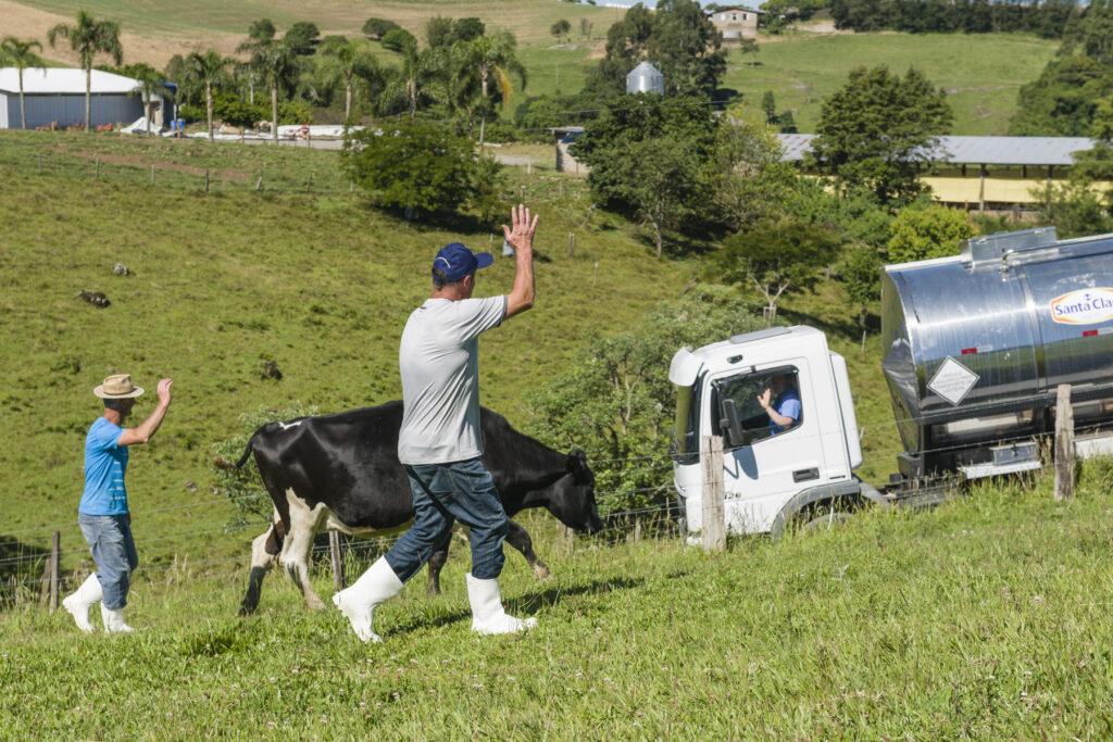 Transportes de leite Santa Clara